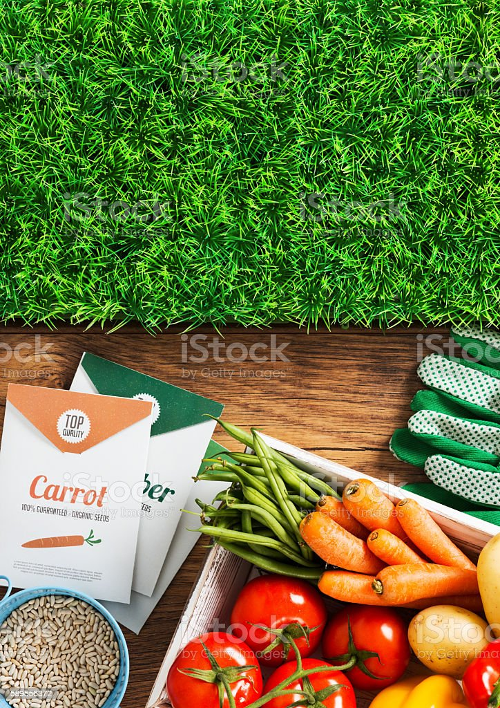 Home grown fresh vegetables stock photo
