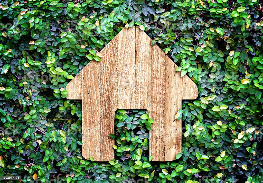 Home icon on green leaves wall,Eco home system stock photo