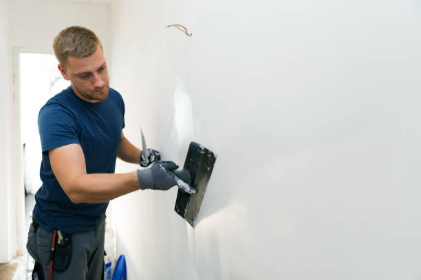 home improvement - construction worker with plastering tools renovating apartment walls home improvement - construction worker with plastering tools renovating apartment walls plaster stock pictures, royalty-free photos & images