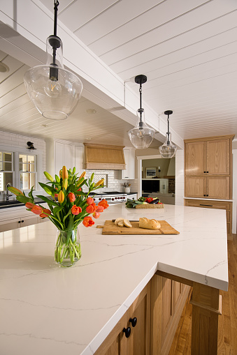 Home Improvement Remodeled Contemporary Kitchen design in Residential Home