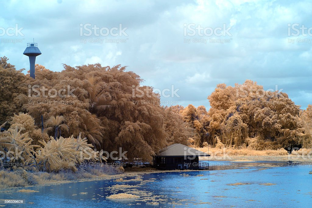 Home in river in near infrared style Lizenzfreies stock-foto