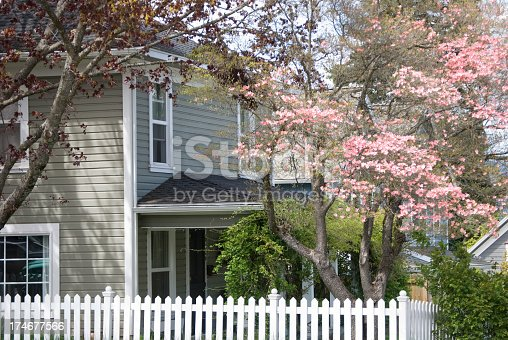 istock Home in Spring 174677566