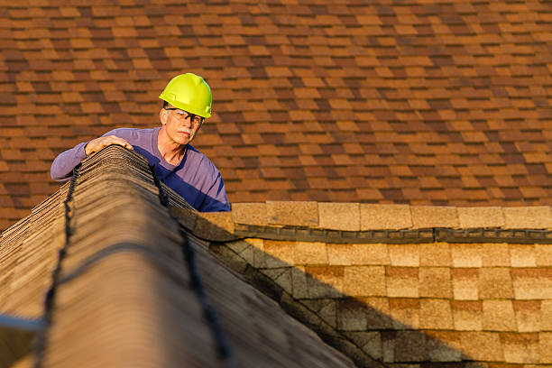 home inspector examines architectural, asphalt shingled roof. - quality control stock photos and pictures