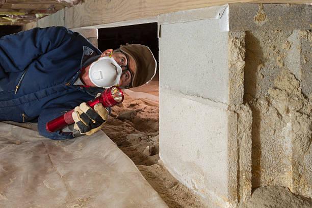 home inspector looks for termites in residential home's crawl space - kruipruimte stockfoto's en -beelden
