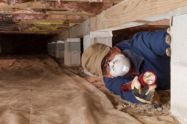 home inspector looks for termites in residential home's crawl space. - kruipruimte stockfoto's en -beelden