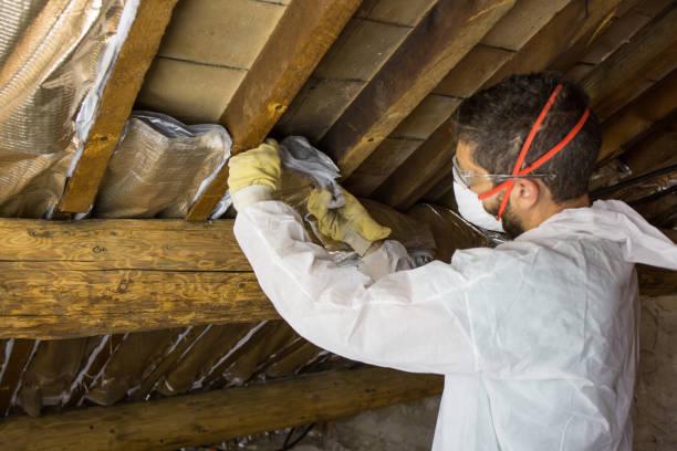 Home Insulation Work stock photo