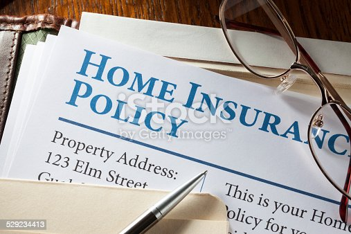 istock Home Insurance Policy 529234413