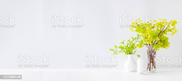 Home interior with decor elements branches with green leaves in a on picture id1212568146?b=1&k=6&m=1212568146&s=612x612&h=9gif6u4fi41u jexh5ebqmamgedylrumiwvor6jpcm0=