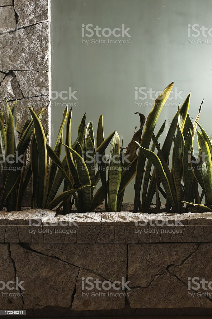 Home interior with stonewalling royalty-free stock photo