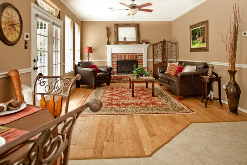 Home Interiors: Living room with decor, sofa, chair, fireplace.