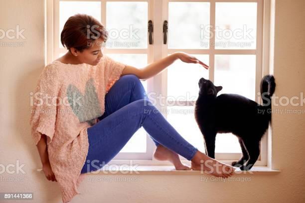 Home is where the kitty is picture id891441366?b=1&k=6&m=891441366&s=612x612&h=c nv4eo g7xyvirlwnsbalth9l5mzfhkjpdohyxw sa=