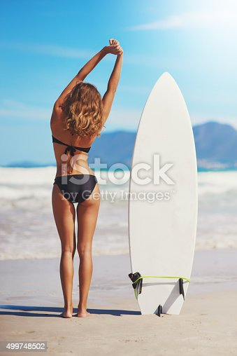 istock Home is where the waves are 499748502