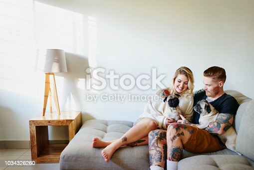 Shot of an affectionate young couple playing with their dogs at home