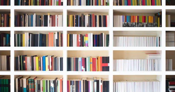 Home library wall. Clean and modern decoration. Organized neat bookshelf room. stock photo