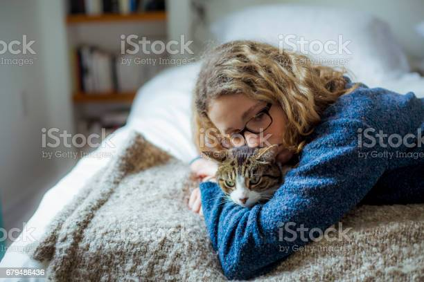 Home moments a girl hugging her tabby cat on a bed picture id679486436?b=1&k=6&m=679486436&s=612x612&h=twvl7ibxztf16xmmoagksb9plrsuwvuzgxxbqglt0hu=
