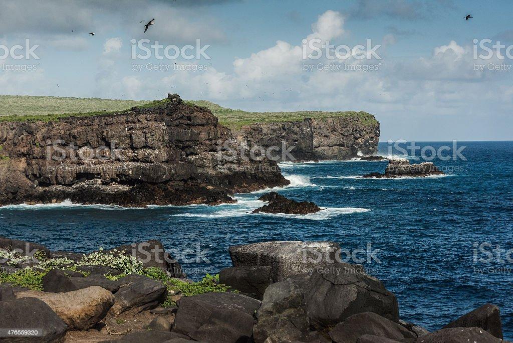 Home of the Albatross stock photo