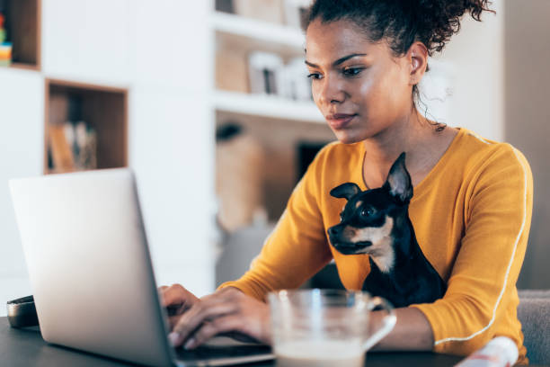 Home office Young afro-american woman sitting with her pet dog and using laptop at home using computer stock pictures, royalty-free photos & images