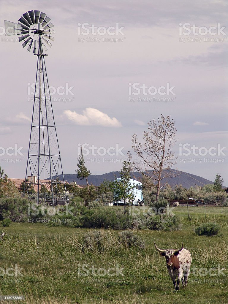 Home on the Range 2 royalty-free stock photo