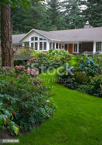 A beautiful lawn curves through Hydrangea gardens to ranch home.