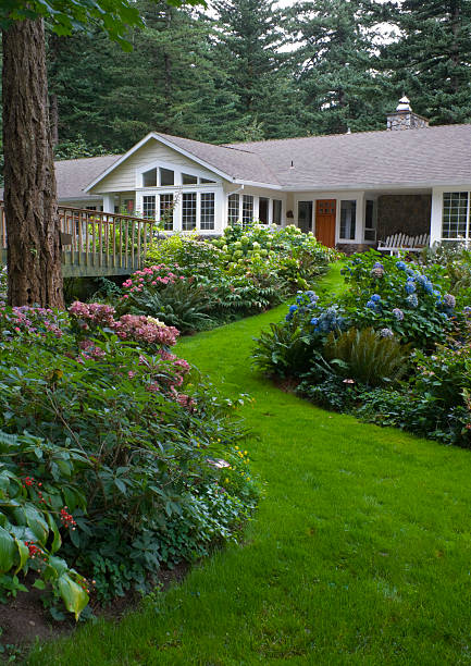 home surounded mit hydrangea gardens - rustikale mode stock-fotos und bilder