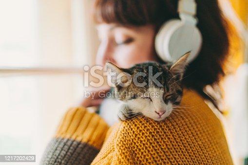 Cute cat sleeping on owner's shoulder