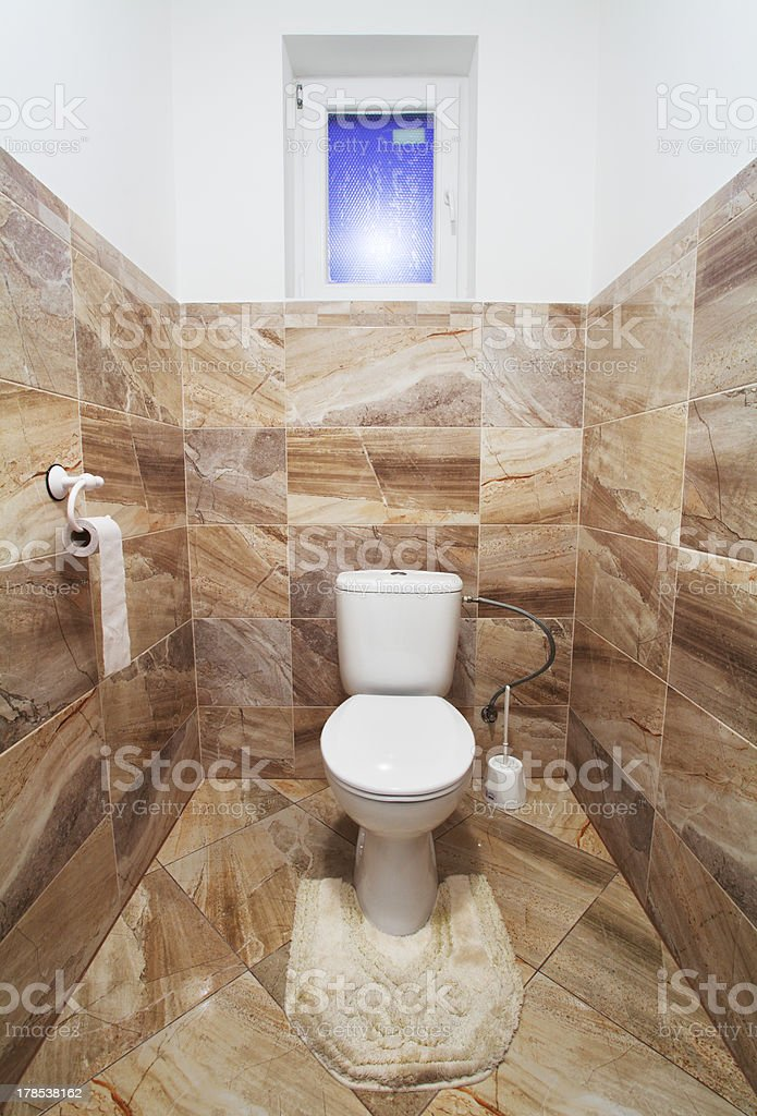 Home toilet royalty-free stock photo