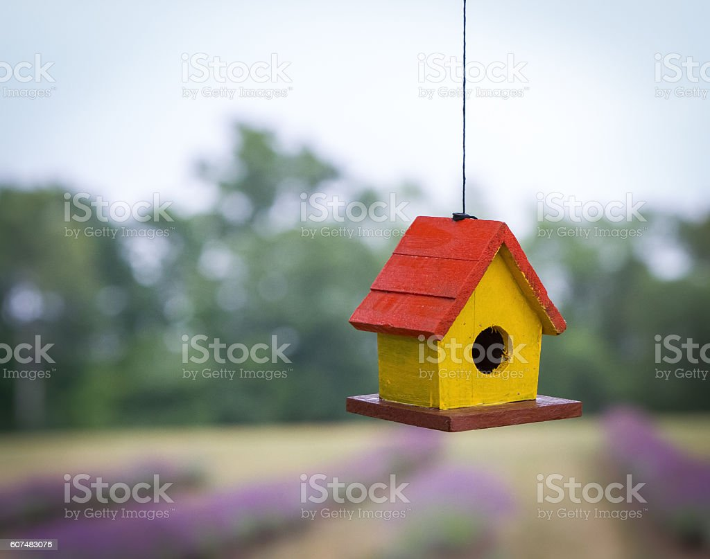 Home Tweet Home stock photo