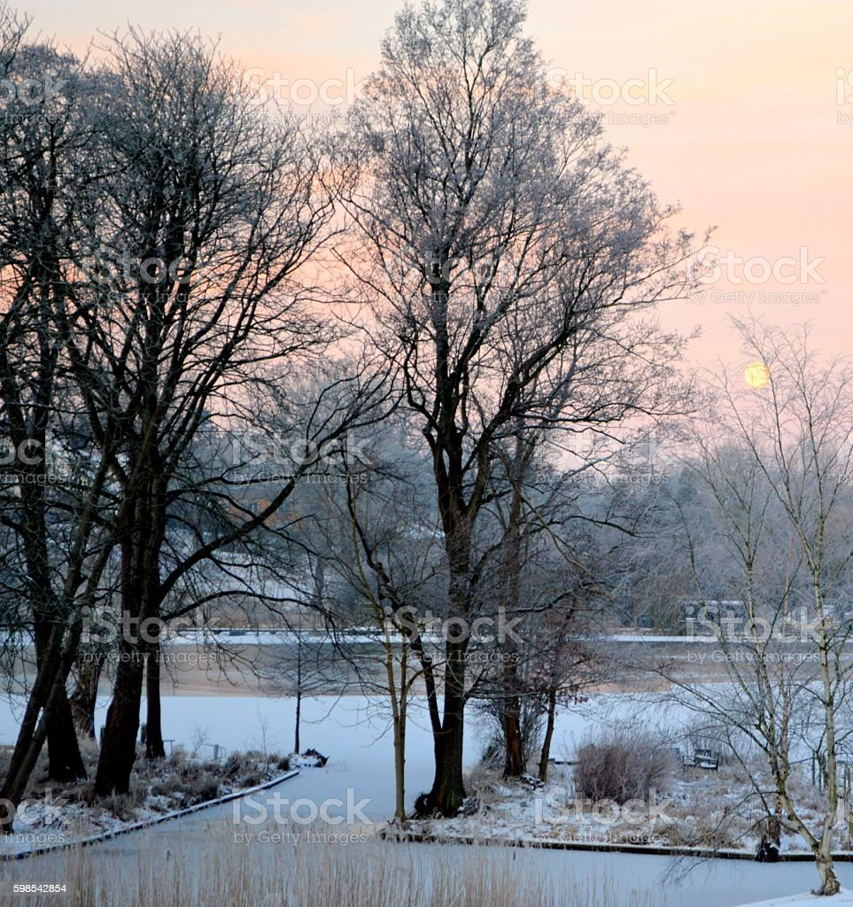 Home with a scenic view of a frozen lake photo libre de droits