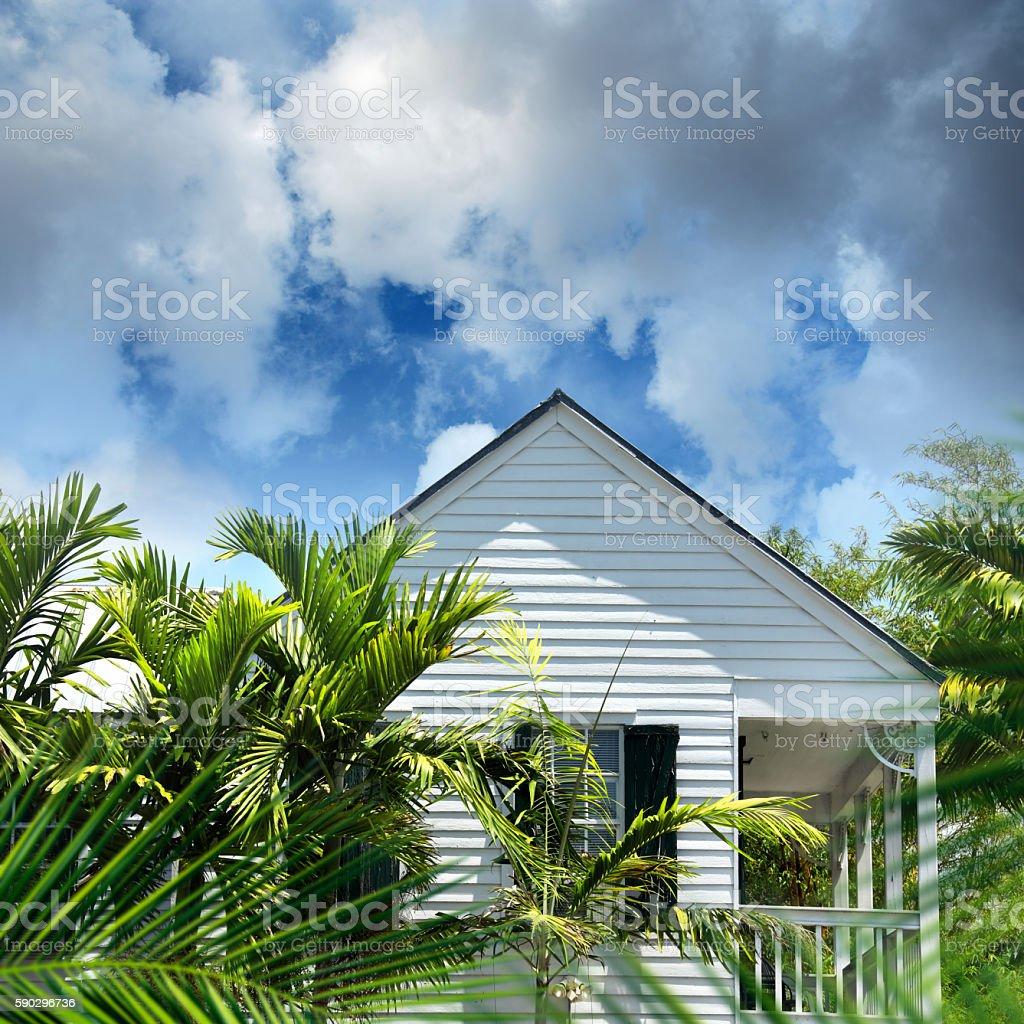 home with palm tree Стоковые фото Стоковая фотография