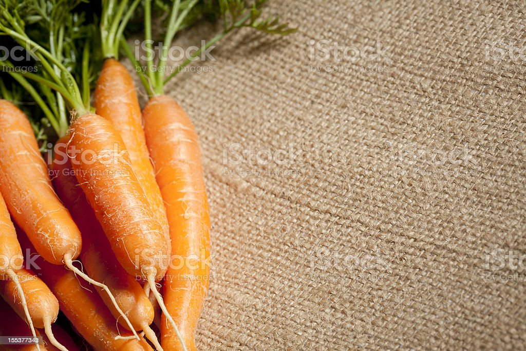 Homegrown Baby Carrots on Burlap Background royalty-free stock photo