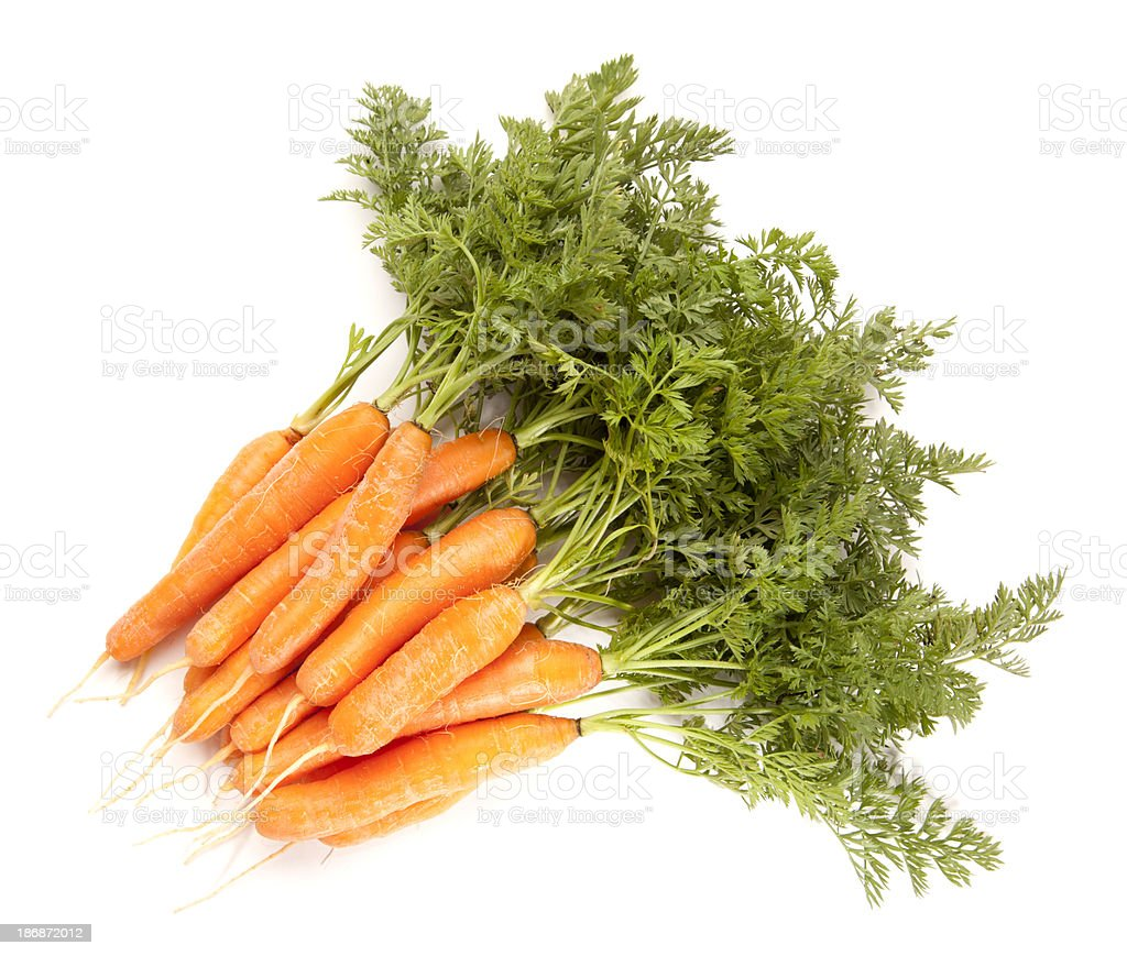 Homegrown Baby Carrots with Tops royalty-free stock photo