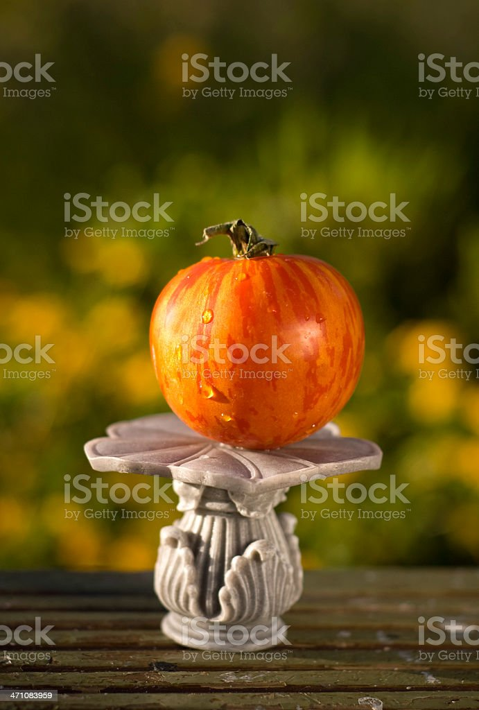 Homegrown Heirloom Tomato royalty-free stock photo