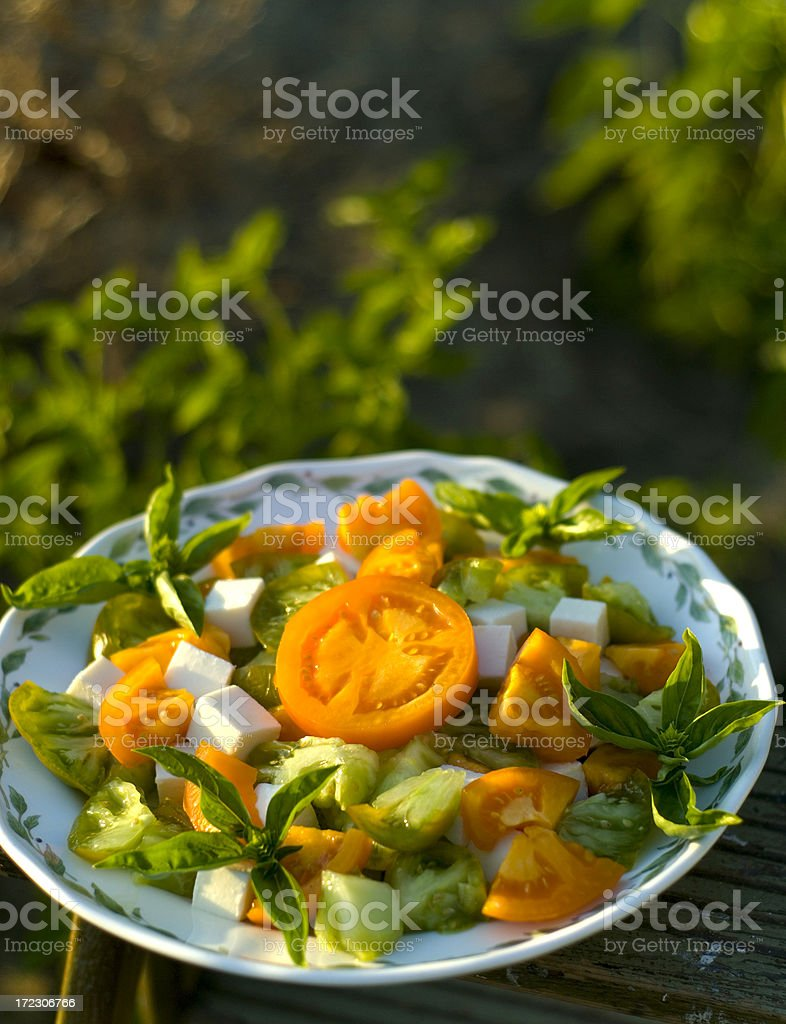 Homegrown Vegetable, Heirloom Tomato & Fresh Basil Caprese Picnic Salad royalty-free stock photo