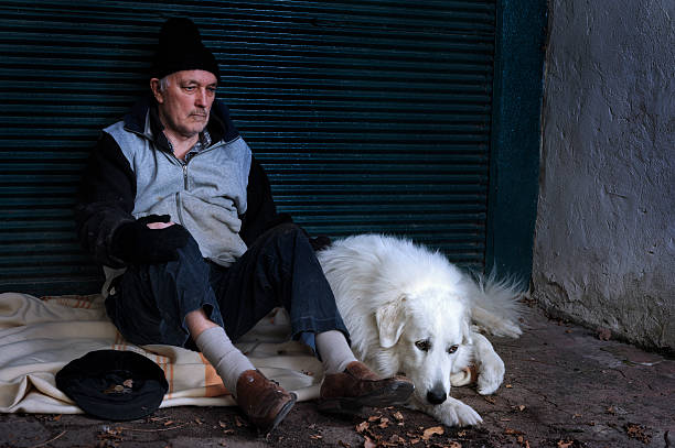 Homeless man with his dog stock photo