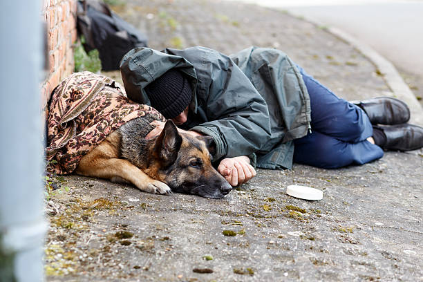 obdachloser mann mit seinem hund - homelessness stock photos and pictures