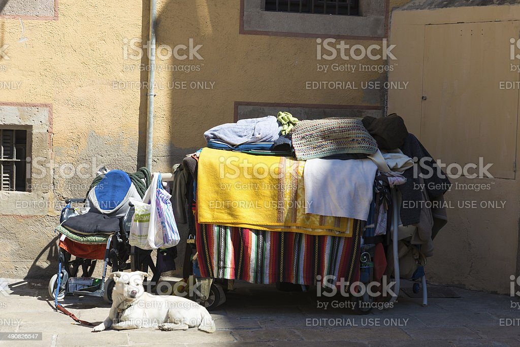 Homelessness with a white dog royalty-free stock photo