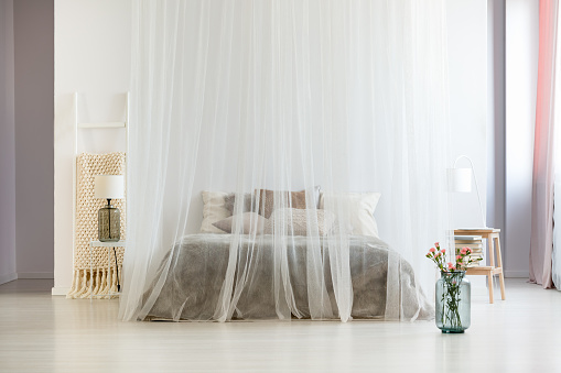 Homely bedroom interior with canopy