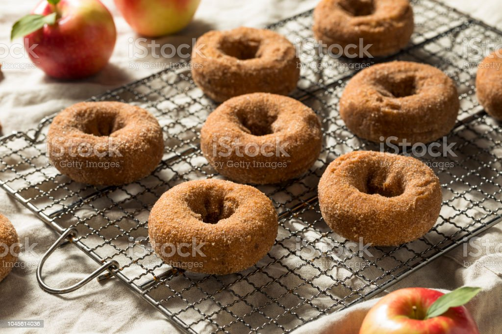 Homemade Apple Cider Donuts stock photo