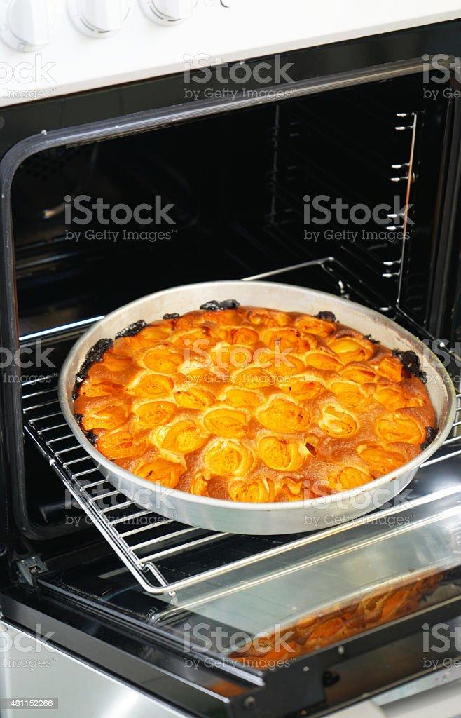 Homemade Apricot Cake stock photo
