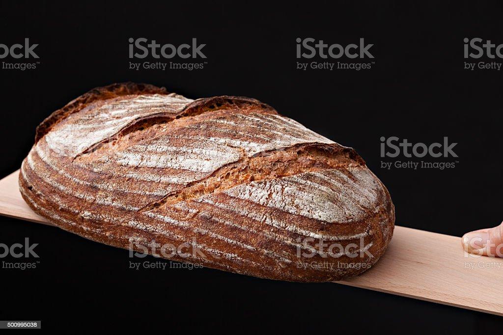 Homemade Artisan Bread stock photo
