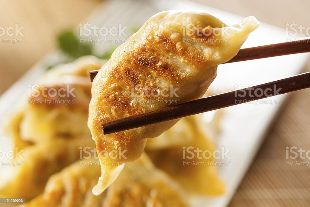 Homemade Asian Vegeterian Potstickers stock photo