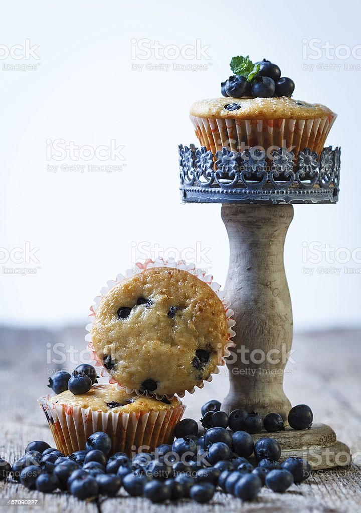Homemade blueberry muffins in paper cupcake holder royalty-free stock photo