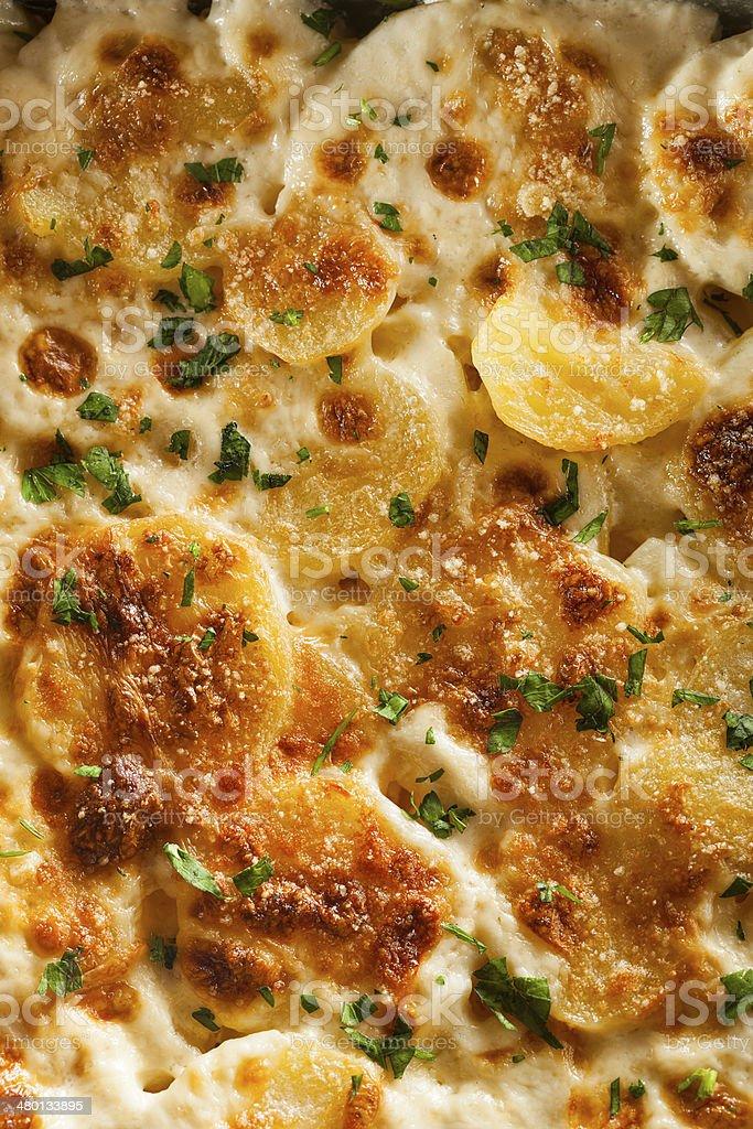 Homemade Cheesey Scalloped Potatoes stock photo