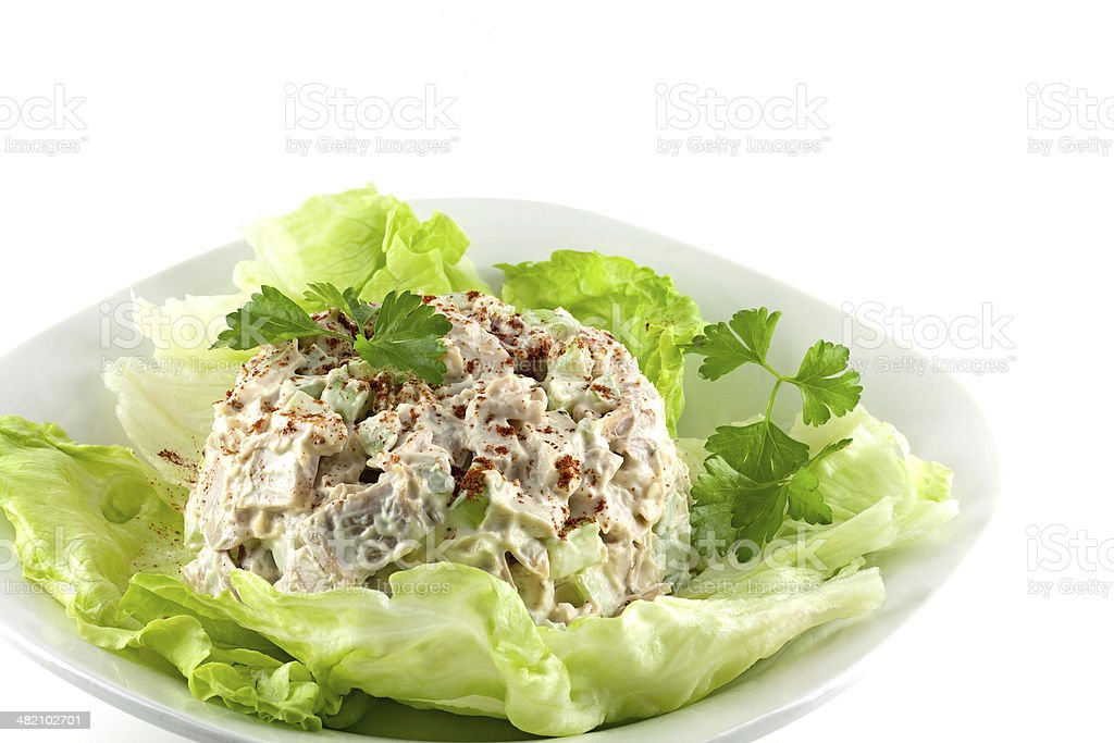 Homemade Chicken Salad stock photo