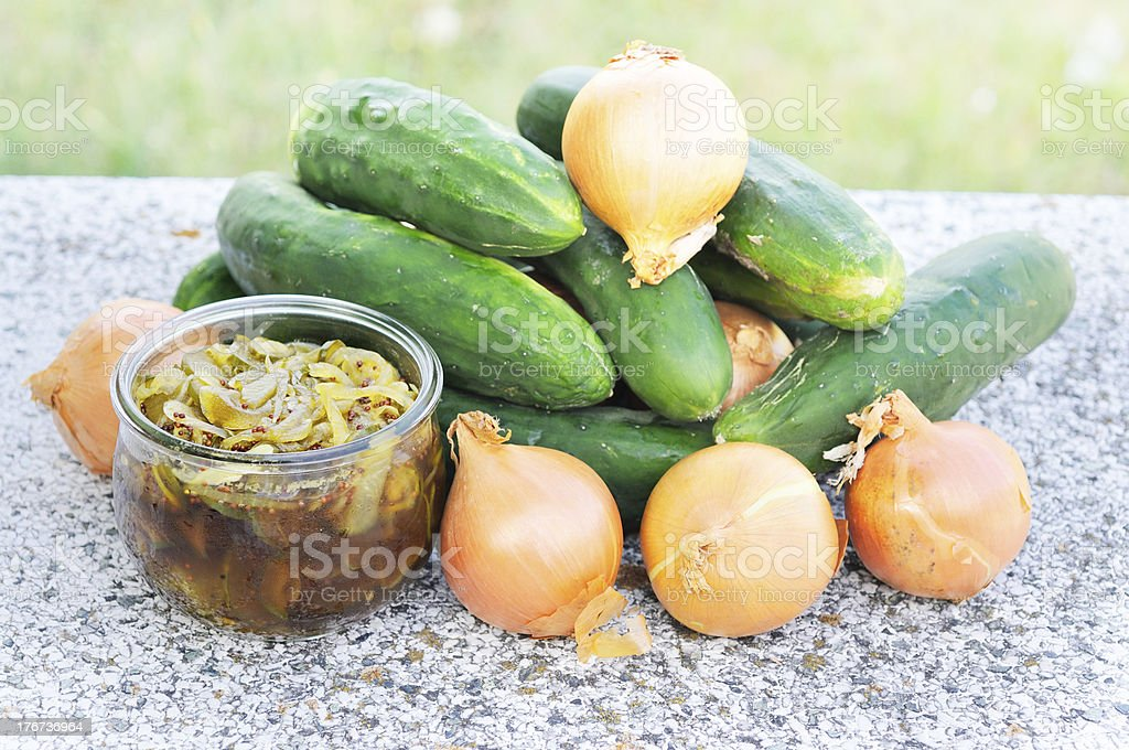 Home-made cucumber pickle royalty-free stock photo
