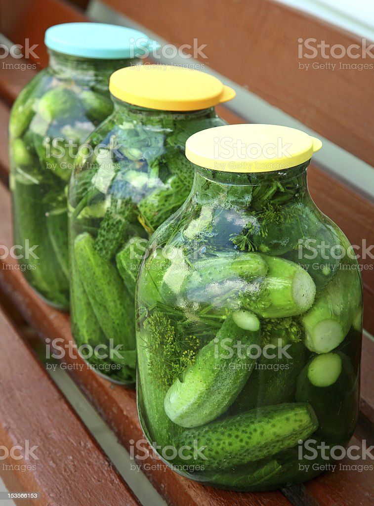 Homemade cucumbers royalty-free stock photo