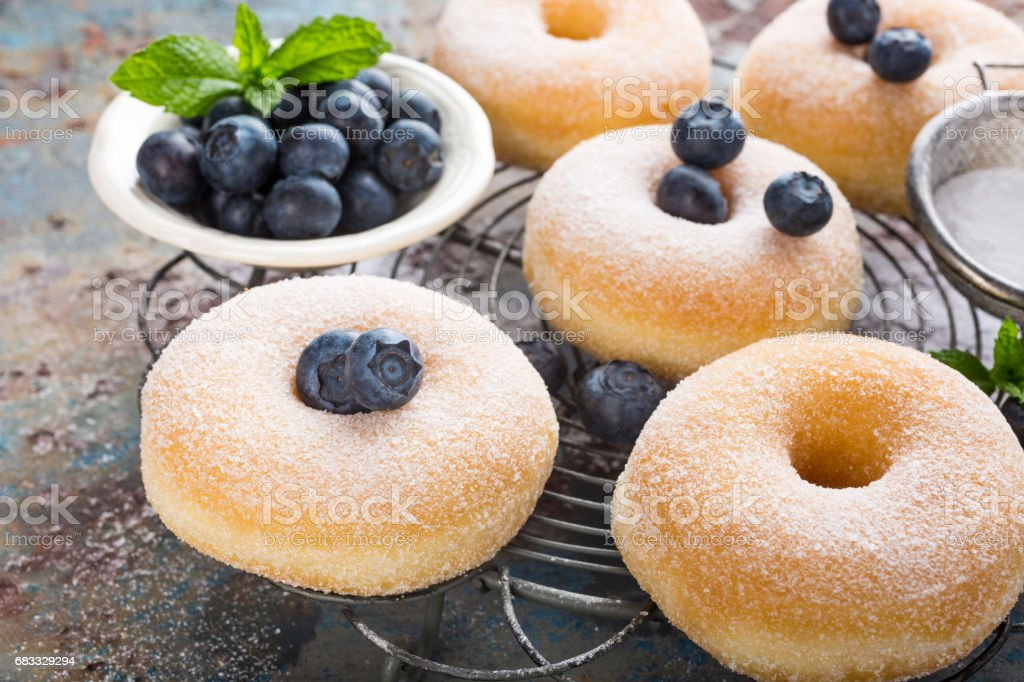 Homemade donuts with sugar royalty-free stock photo