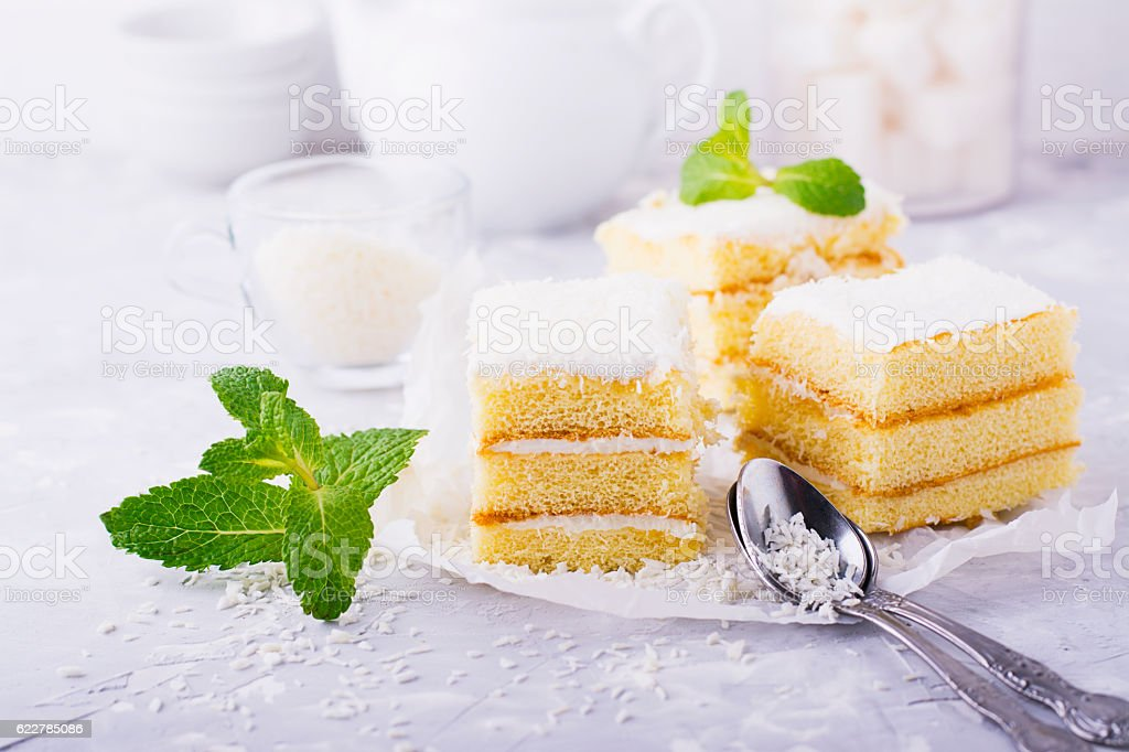 Homemade fresh sponge cake in the coconut cream and flakes - foto de acervo