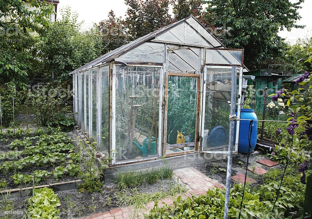 homemade greenhouse stock photo