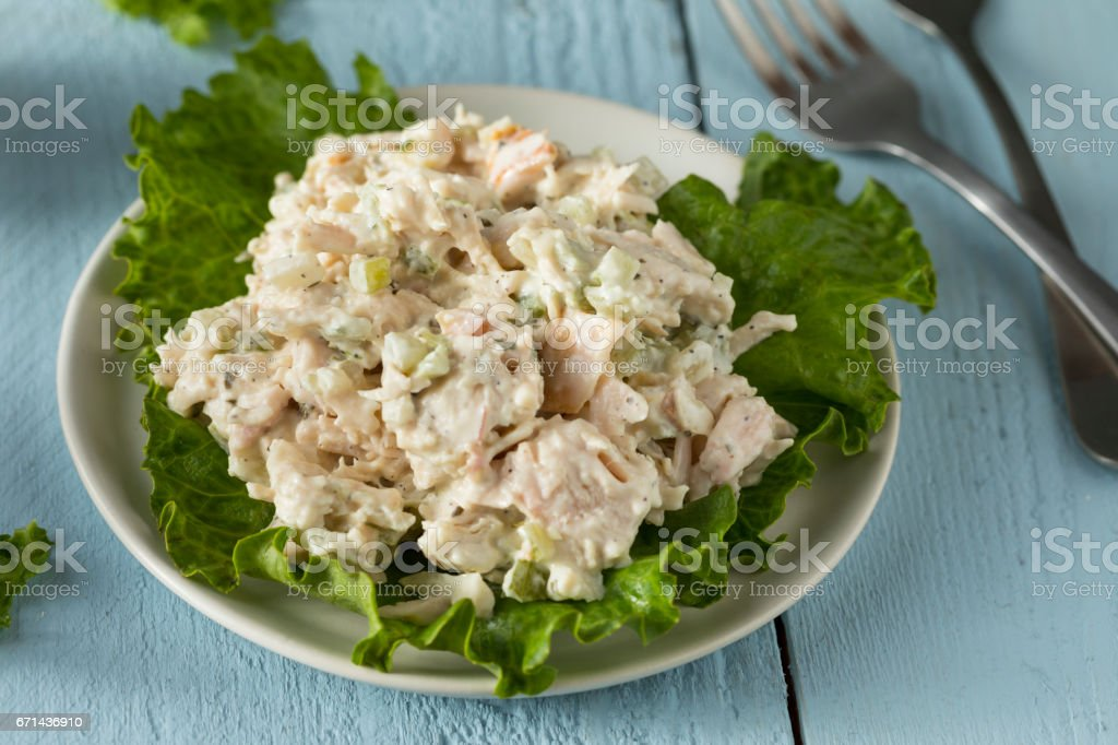 Homemade Healthy Chicken Salad stock photo